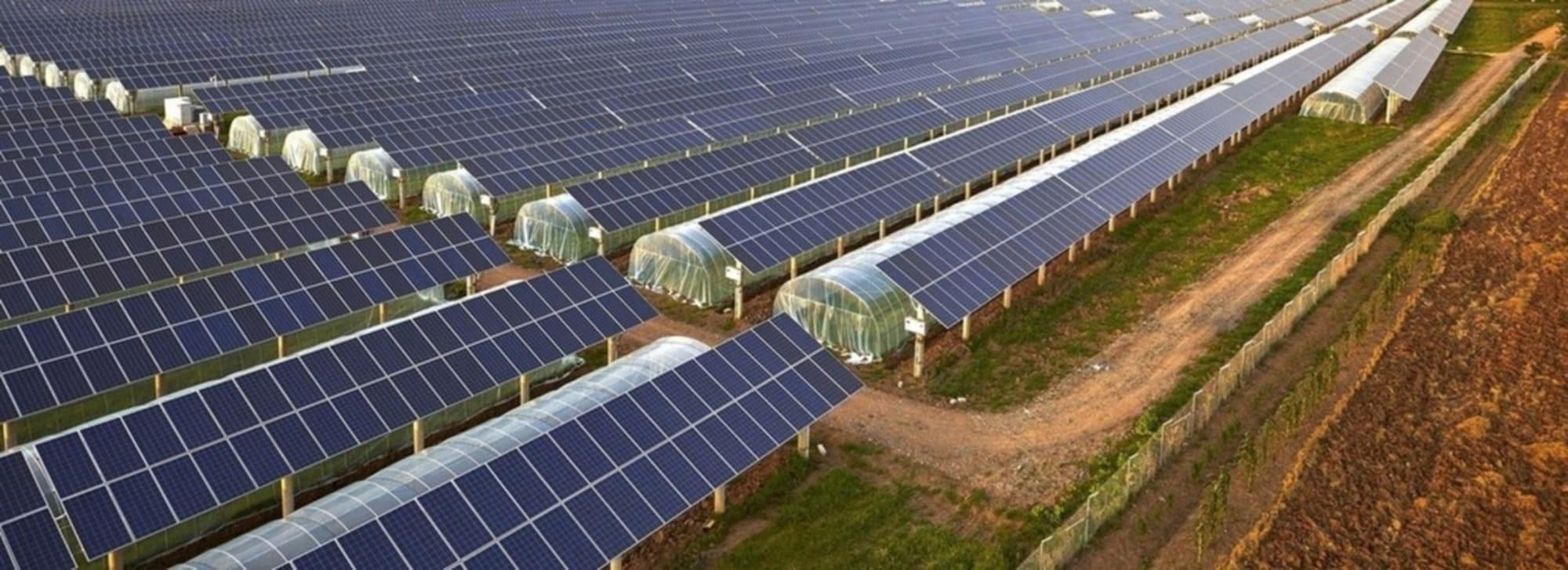 Commercial-Solar-Modules